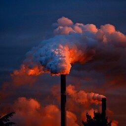Petice za klima