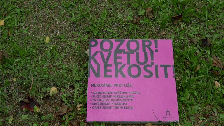 Česko chrání klima aneb příklady dobré praxe